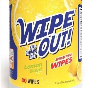 Wipe Out Disinfectant Wipes
